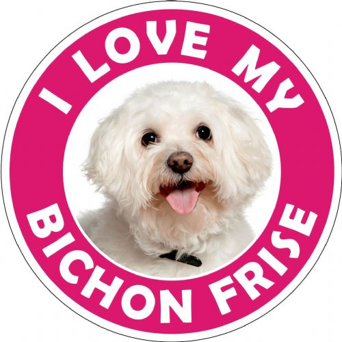 Bichon Frise sticker